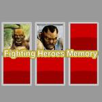 Fighting Heroes Memory