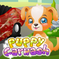 Puppy Carwash