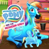 Rainbow Dash Pony And The New Born Baby