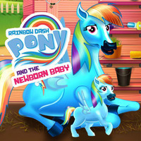 Rainbow Dash Pony And The New Born Baby