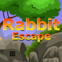 Rabbit Escape