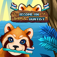 Become An Animal Dentist