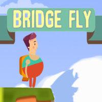 Bridge Fly