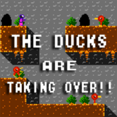 The Ducks Are Taking Over!!