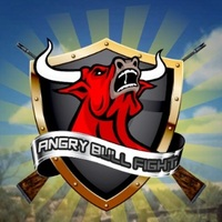 Angry Bull Fight